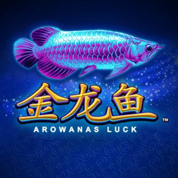 Arowanas Luck